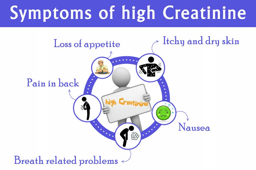 Ayurvedic doctor for creatinine treatment in Himachal Pradesh