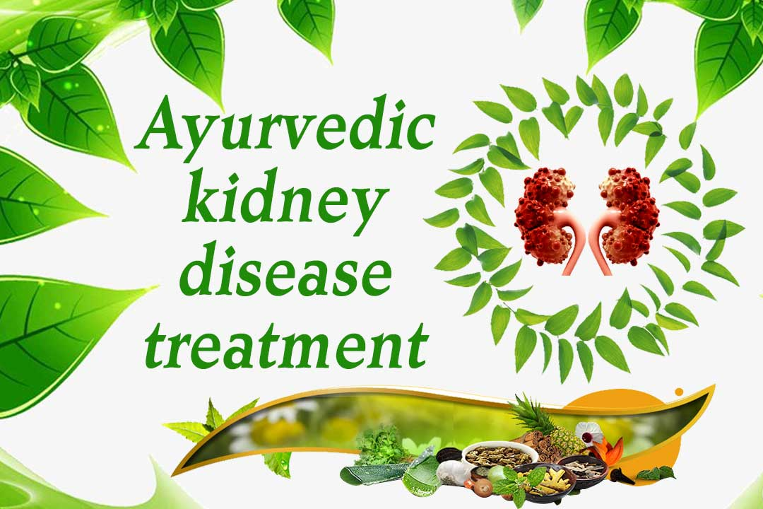 Kidney Treatment in Manipur