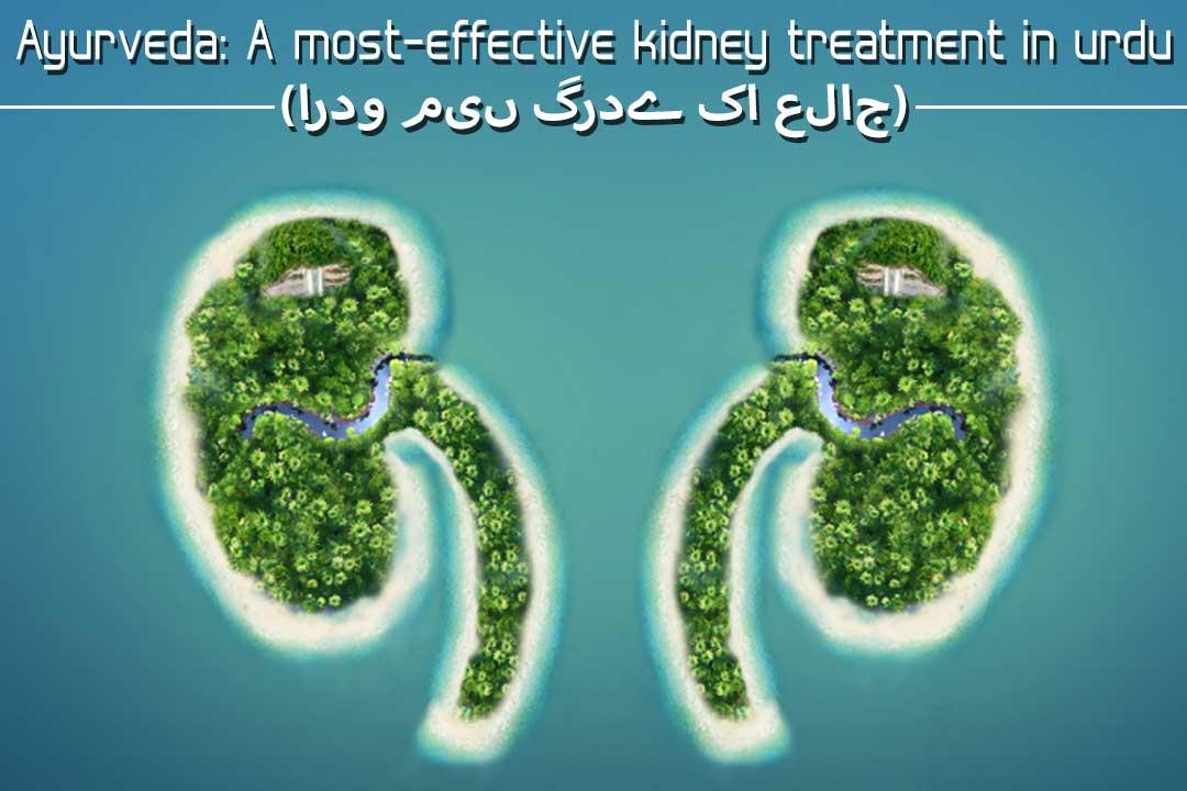 Ayurveda A Most Effective Kidney Renal Treatment In Urdu