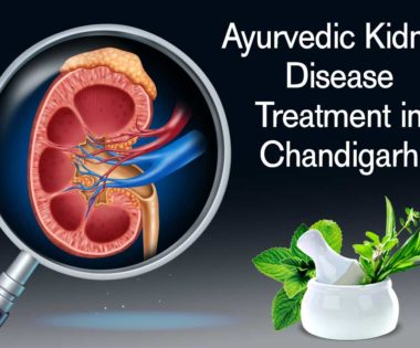Ayurvedic Kidney Disease Treatment in Chandigarh