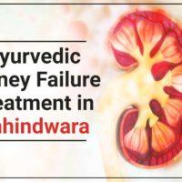 Ayurvedic Kidney Failure Treatment in Chhindwara