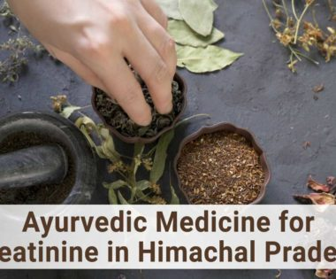 Ayurvedic medicine for creatinine in Himachal Pradesh