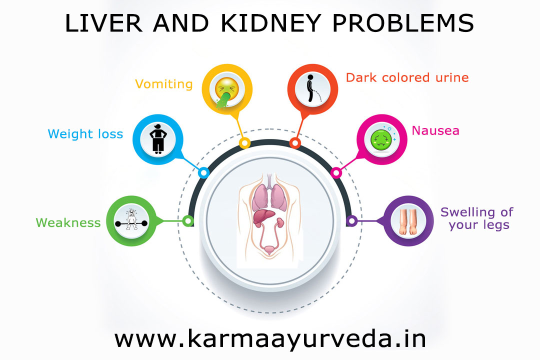 Gomutra Use in Liver and Kidney