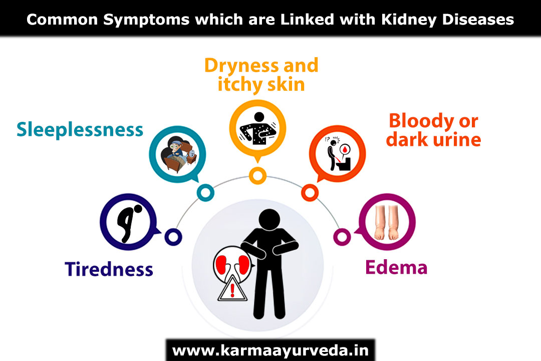 Check Kidney Function At Home