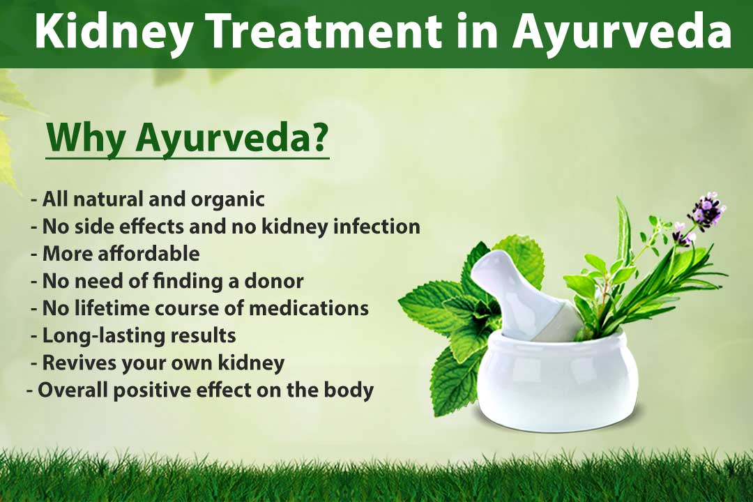 Is Kidney Treatment in Ayurveda a Myth or Truth?