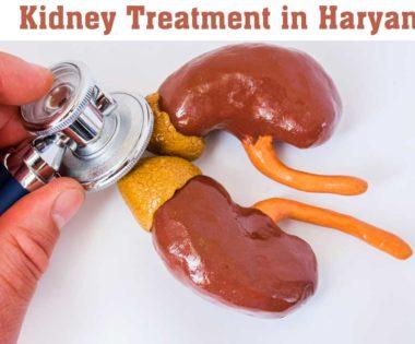 Kidney Treatment in Haryana