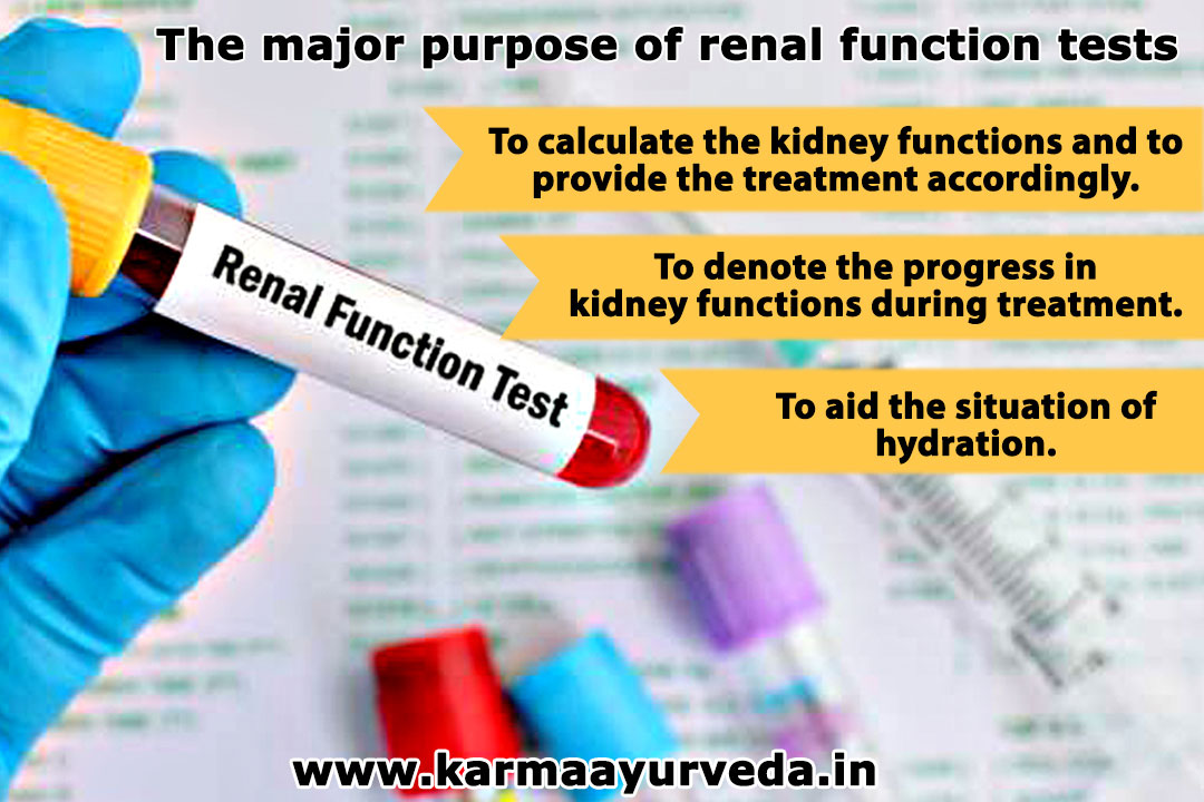 Renal Function Test Abbreviation