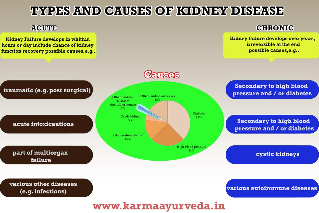 How kidney Disease Happen?