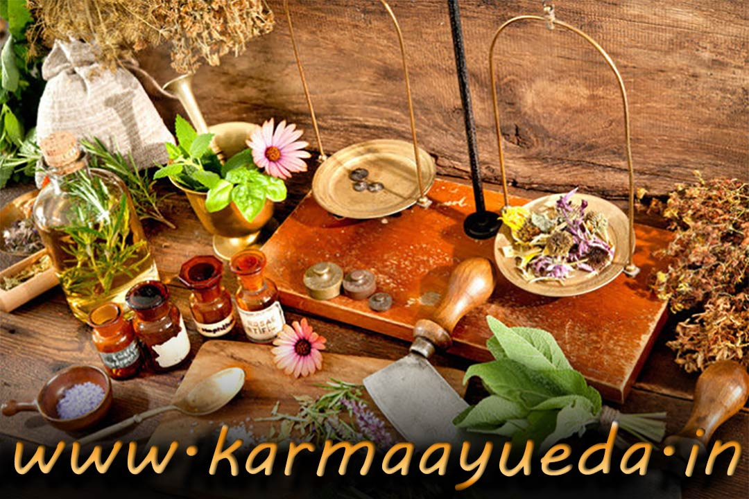 Best Foods To Increase Kidney Function Ayurvedic Kidney Disease Treatment