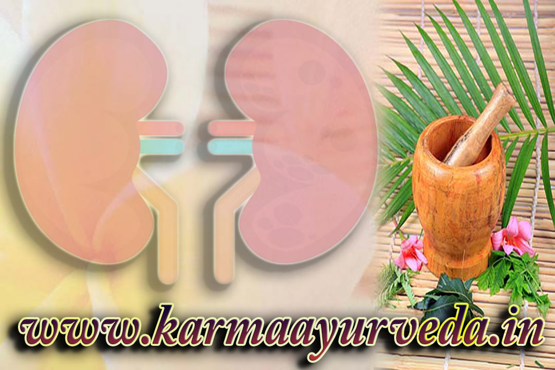 Kidney Failure Treatment Dindigul