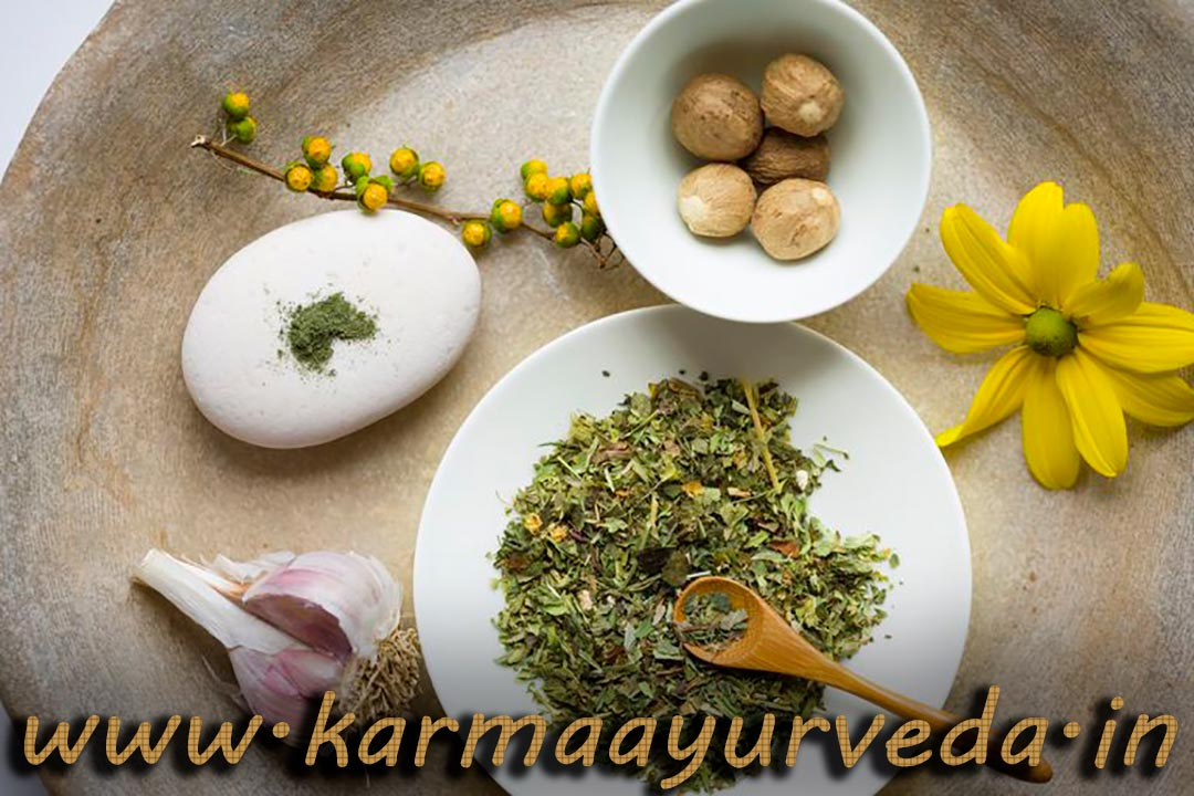 Kidneys Ayurvedic Treatment