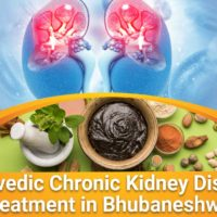 ayurvedic chronic kidney disease treatment in Bhubaneshwar