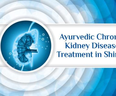 ayurvedic chronic kidney disease treatment in Shimla