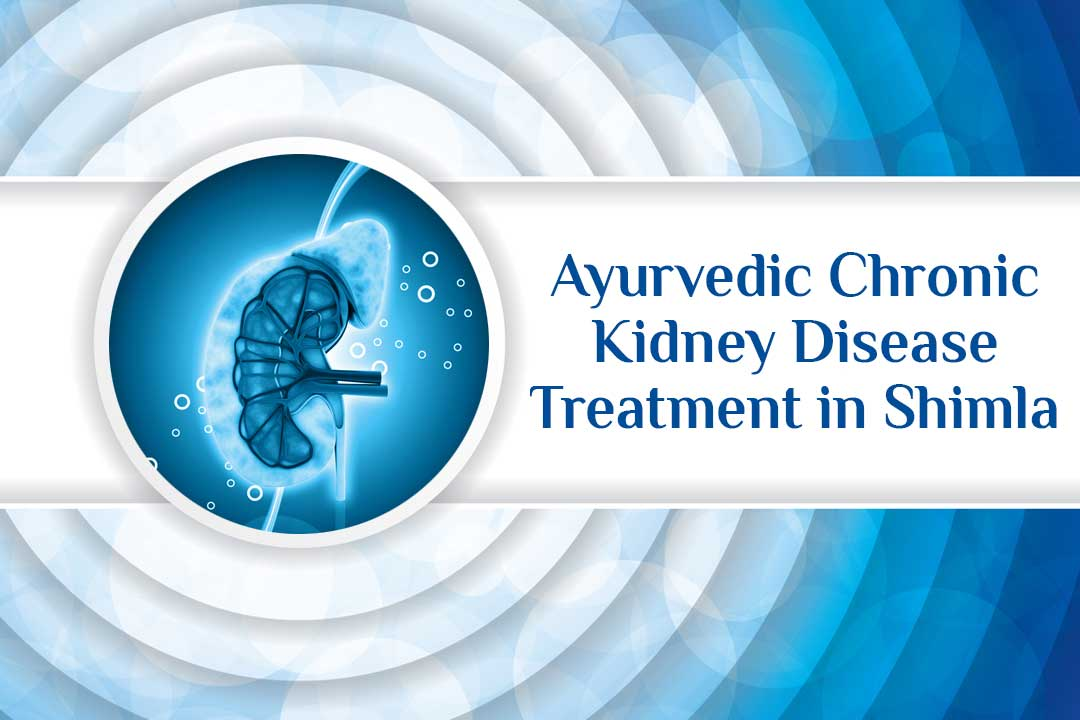 ayurvedic chronic kidney disease treatment in Shimla