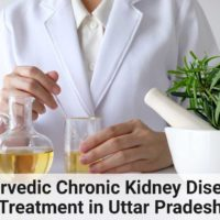 ayurvedic chronic kidney disease treatment in Uttar pradesh