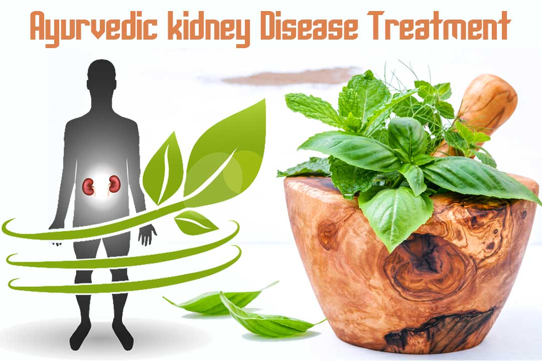 Ayurvedic Chronic Kidney Disease