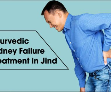 ayurvedic kidney failure treatment in Jind