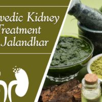 ayurvedic kidney treatment in jalandhar