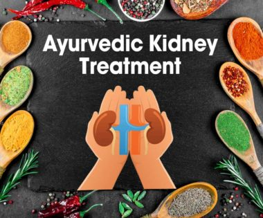 Ayurvedic Treatments For Kidney