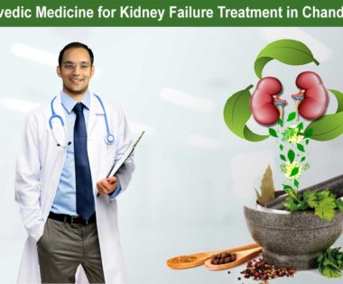 ayurvedicmedicine for kidney failure treatment in Chandigarh